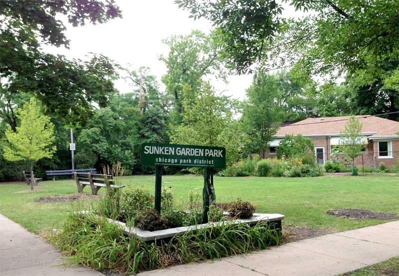 New trees in Sunken Garden Park
